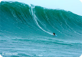Mole riding a 50 foot wave at Aileens