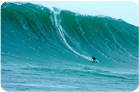 Mole's 50 foot wave at Aileens